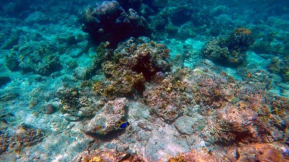 Viaje a Indonesia: Islas Gili