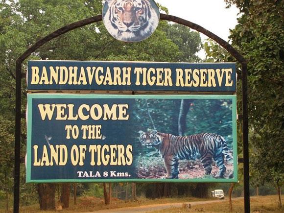 Los mejores parques nacionales de la India: Parque Nacional de Bandhavgarh