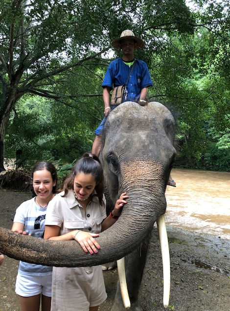 Safari en elefante en Chiang Mai
