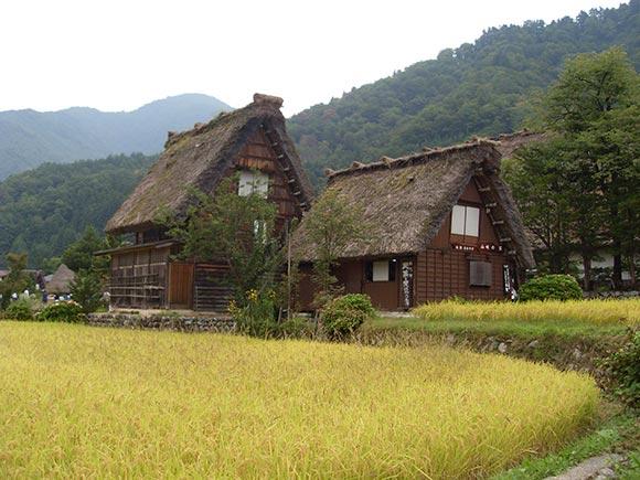 Viaje a Japón: Shirakawago